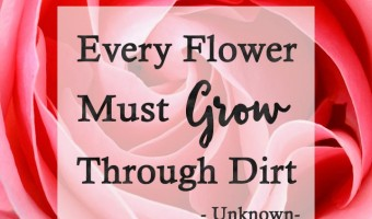Beauty quotes to enjoy part 1