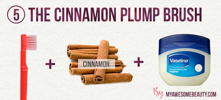 the cinnamon plump brush