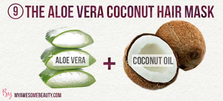 The aloe vera coconut hair mask
